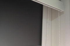 Manual Roller Blinds With Guide (Mimosa Park)
